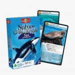 Bioviva Nature Challenge – Sea Creatures