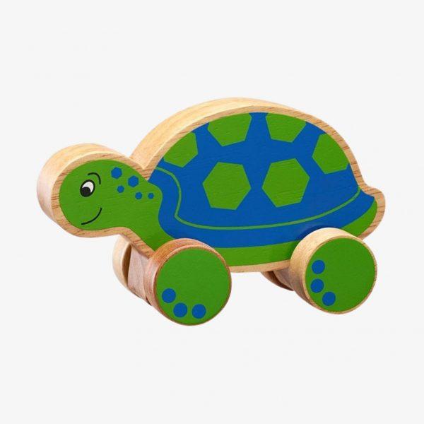 lanka kade turtle